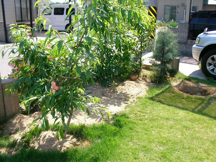 芝刈りと芝生のレイアウト変更8