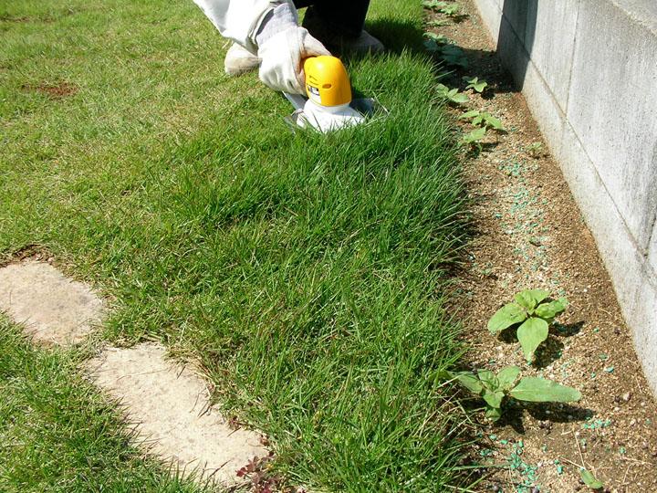 芝刈りと芝生のレイアウト変更2