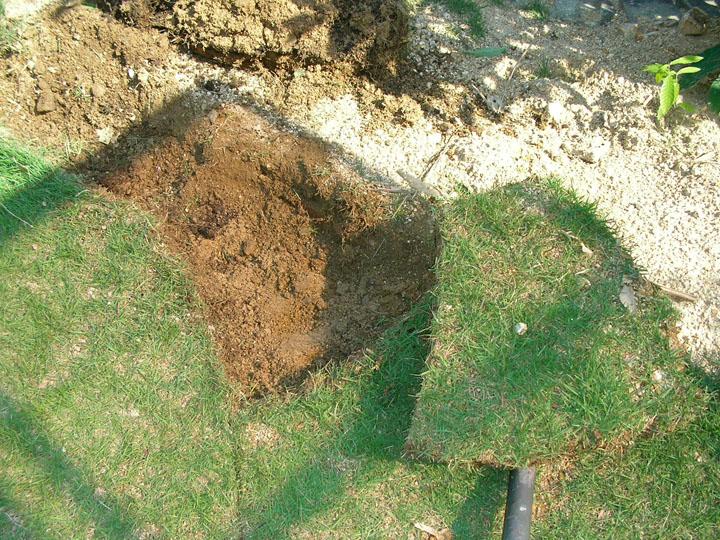 芝刈りと芝生のレイアウト変更14