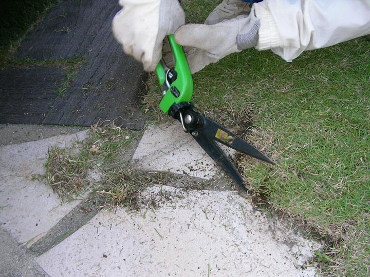 芝刈りと芝生のレイアウト変更5