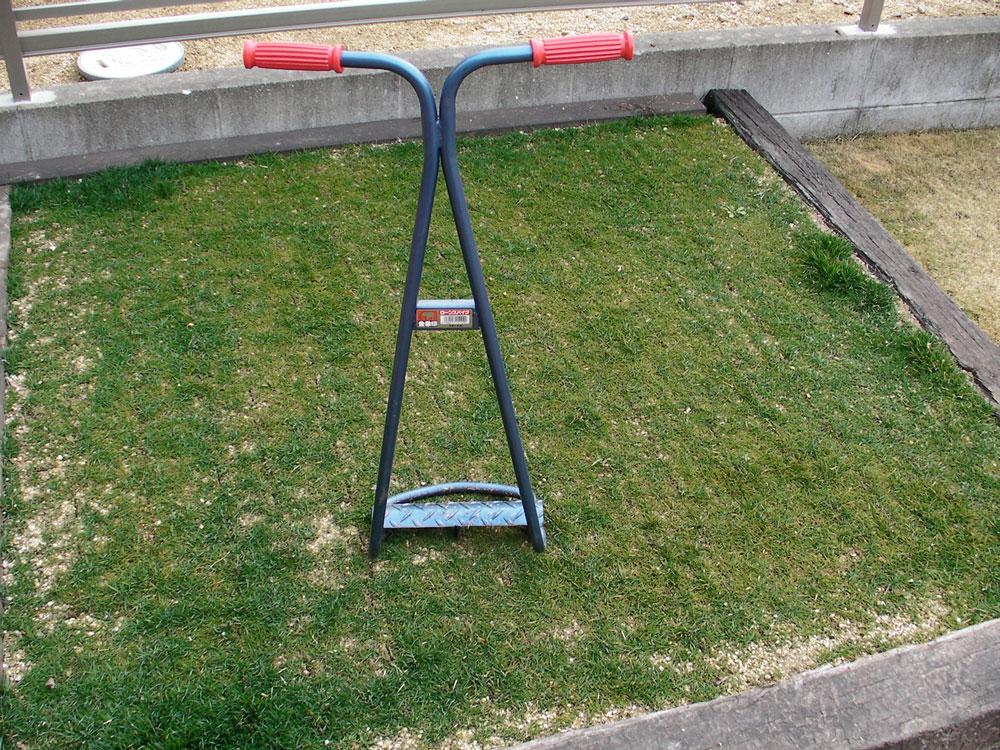 芝生の更新作業11