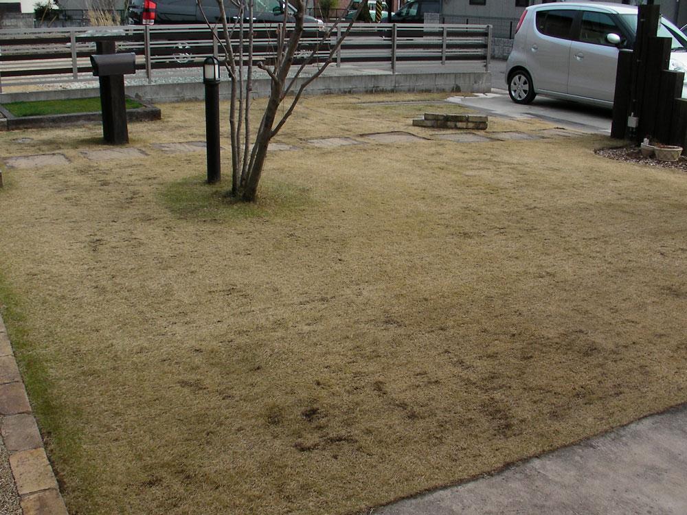 芝生の更新作業18