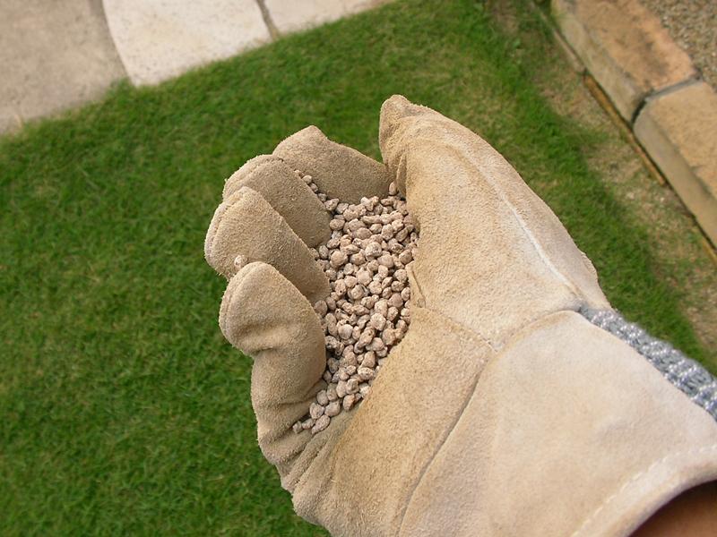 芝生肥料のまき方