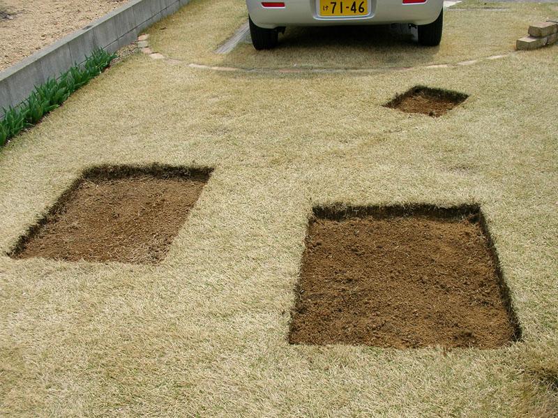 芝生張替えの様子3