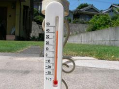 芝生の上の温度計