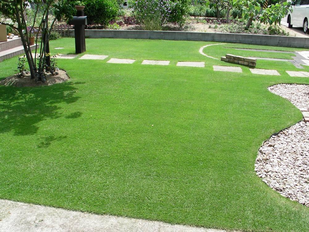 正常な芝生