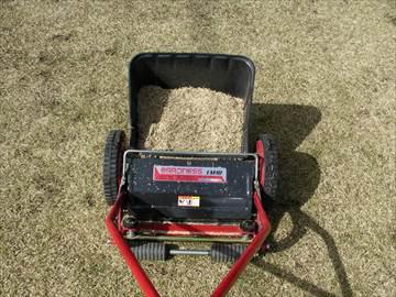 冬枯れした芝生の芝刈り