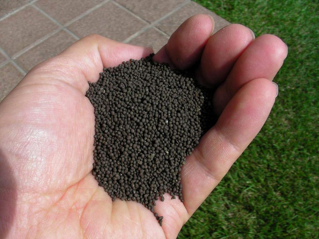 芝生の肥料選び方や効果・まき方・注意点を徹底解説
