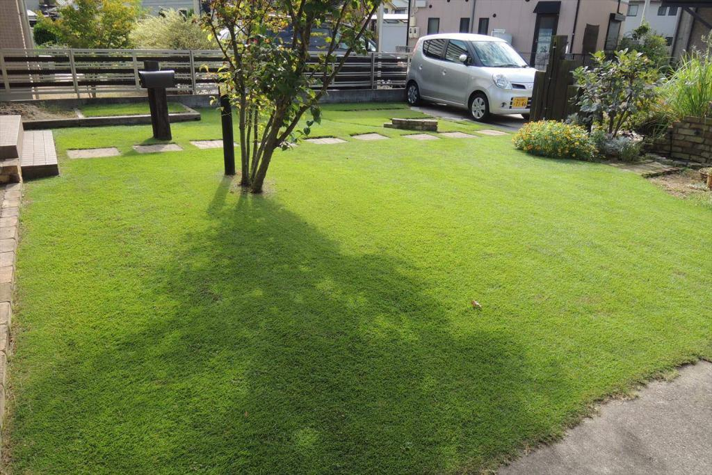 9月の芝生の手入れ 基本作業と注意点