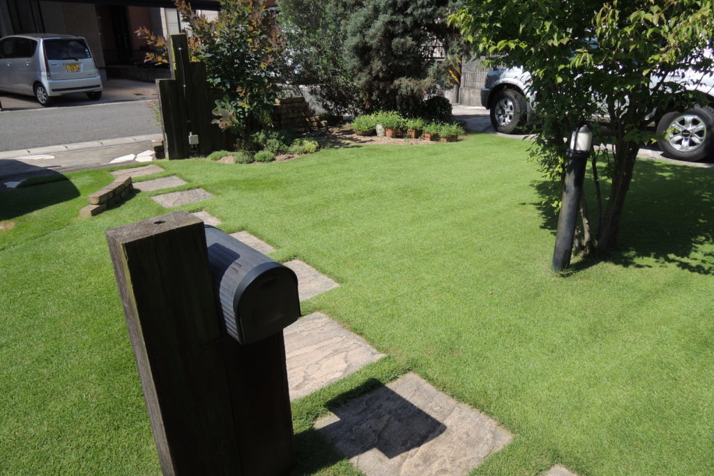 7月の芝生の手入れ 基本作業と注意点