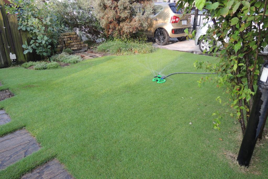 8月の芝生の手入れ 基本作業と注意点