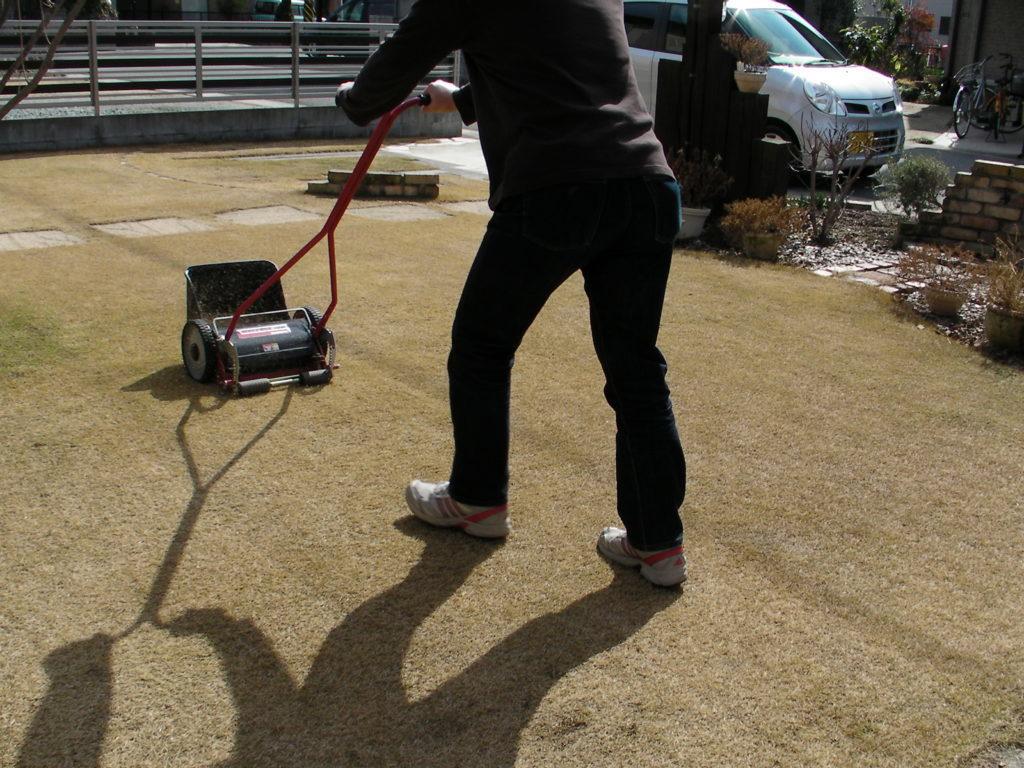 2月の芝生の手入れ 基本作業と注意点