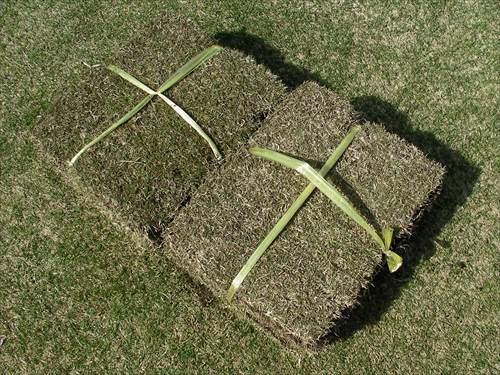 切り芝は新鮮なものを入手する