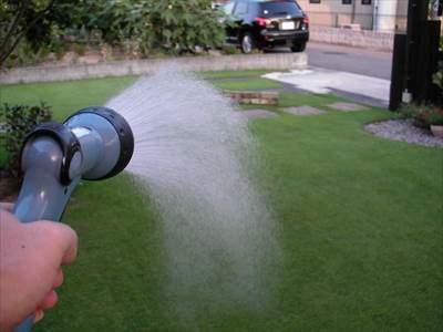芝生に散水