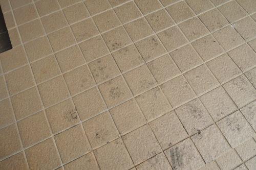 焼けた芝の墨でついた足跡