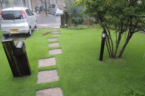 芝生に大量の雨が降る様子