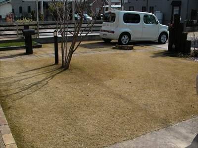 日本芝は冬になると枯れる