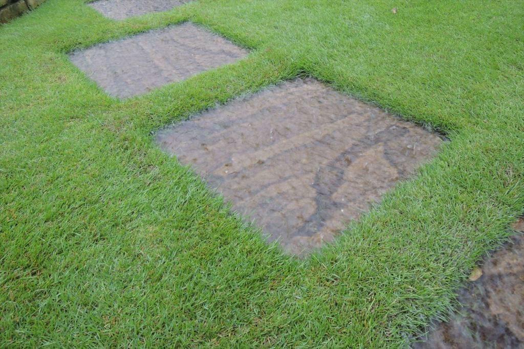 台風で芝生の手入れどころではない週末