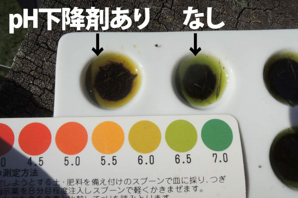 落ち葉集めと土壌のpH測定