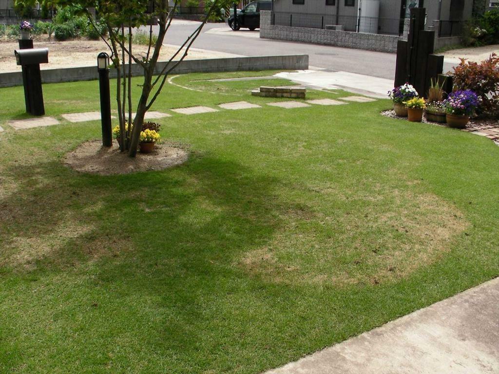 芝生の病気と土壌pHの関係