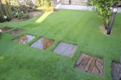 芝生の散水は朝がお勧め