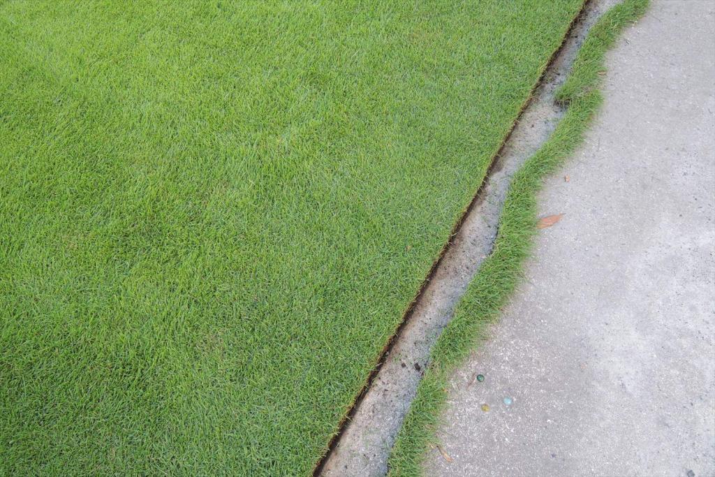 芝生の際刈り(キワ刈り)・エッジカット