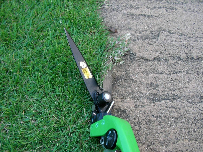 芝 刈り 機 偽物