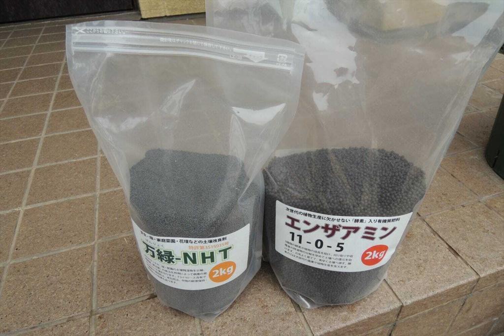 寒地型西洋芝に粒状肥料を散布