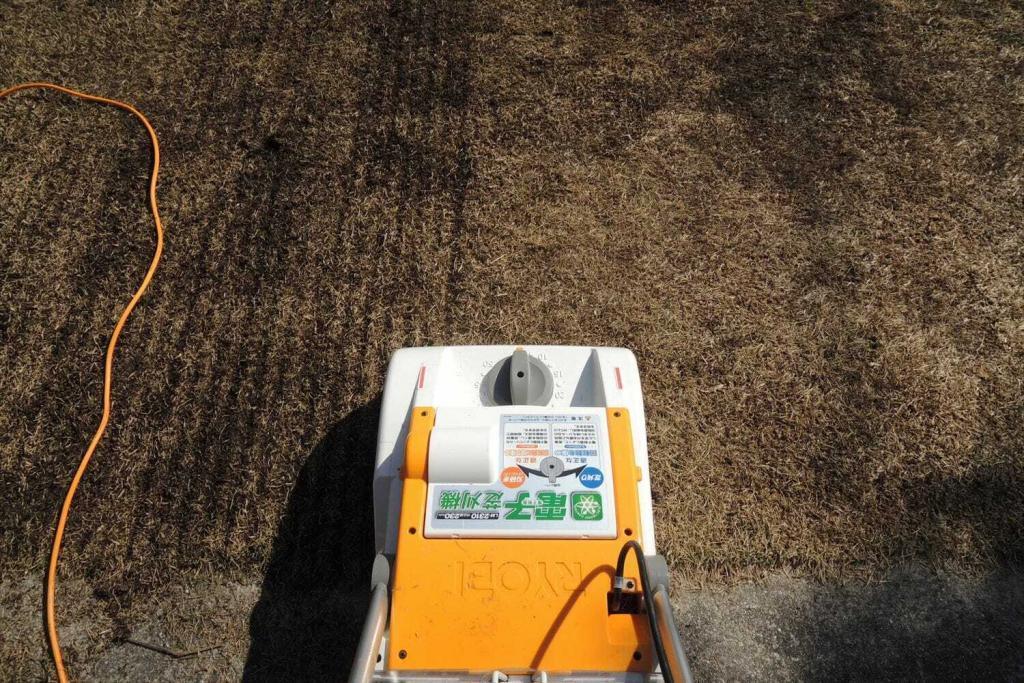 芝生の更新作業第2弾 根切り作業