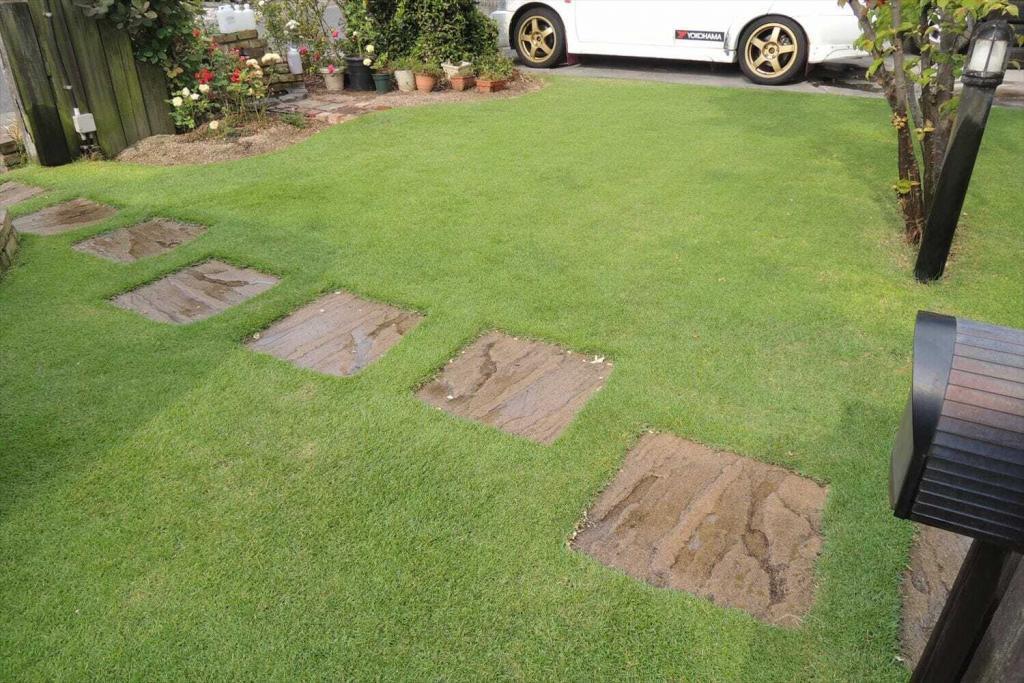 ほぼ枯れた雑草の様子とpH下降剤散布