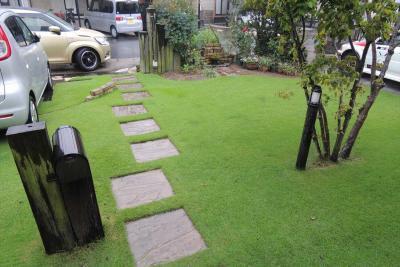 降雨の中の芝生