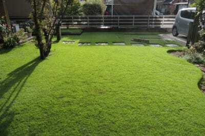 日差しを浴びる芝生