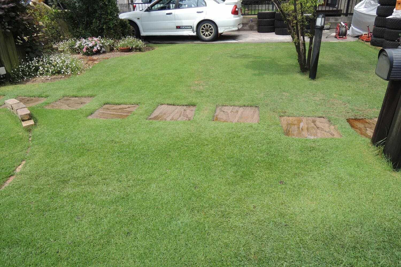 散水後の芝生